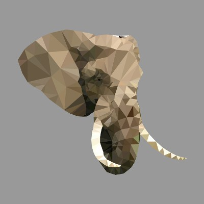 The Elephant in the Server Room: 3 IT Needs Businesses Shouldn't Ignore